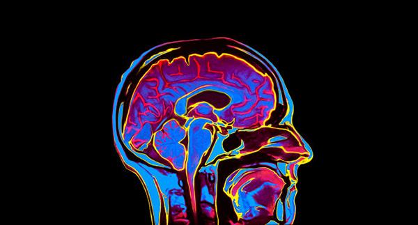investment-brain-banner